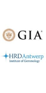 HRD - GIA Sertifikalı Yüzük